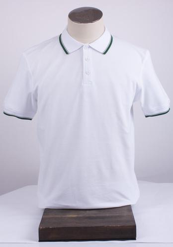 Мужская футболка-поло АРТ. 2-181-20-2101